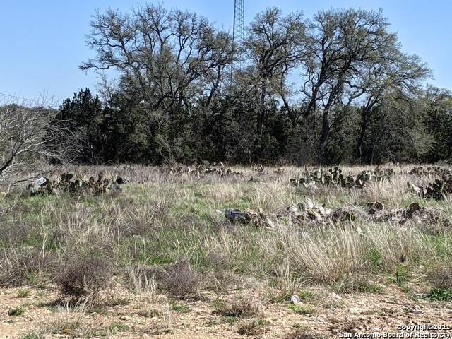 312 Pioneer Crst, New Braunfels, TX 78132 (MLS #1514727) :: Neal & Neal Team