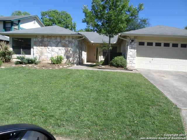3426 Green Spring, San Antonio, TX 78247 (MLS #1515429) :: BHGRE HomeCity San Antonio