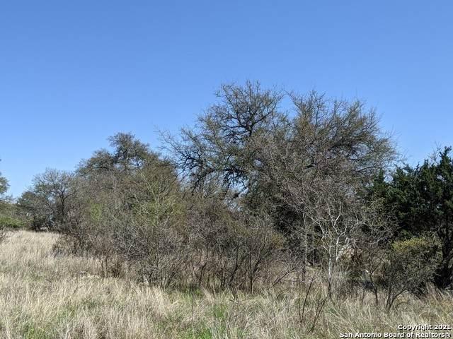 2333 Appellation, New Braunfels, TX 78132 (MLS #1515900) :: BHGRE HomeCity San Antonio