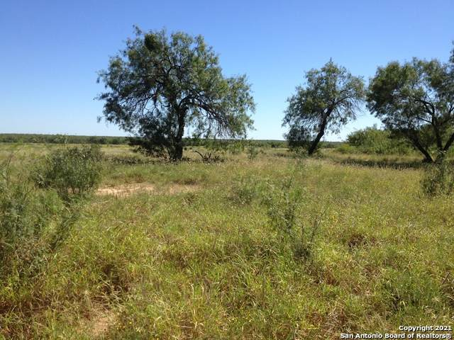 186 Fm 186, Carrizo Springs, TX 78834 (MLS #1516138) :: REsource Realty