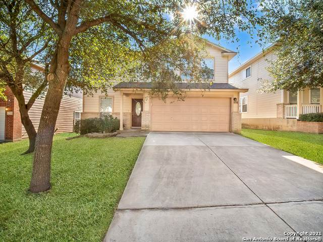 6726 Loma Vino, San Antonio, TX 78233 (MLS #1516186) :: The Gradiz Group