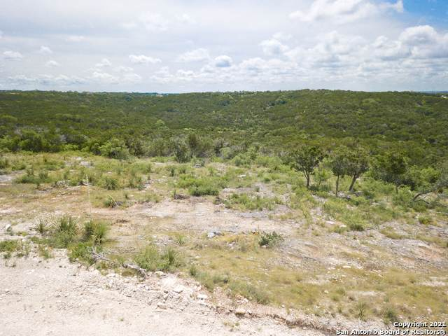 1142 Pr 2771, Mico, TX 78056 (MLS #1516268) :: Real Estate by Design
