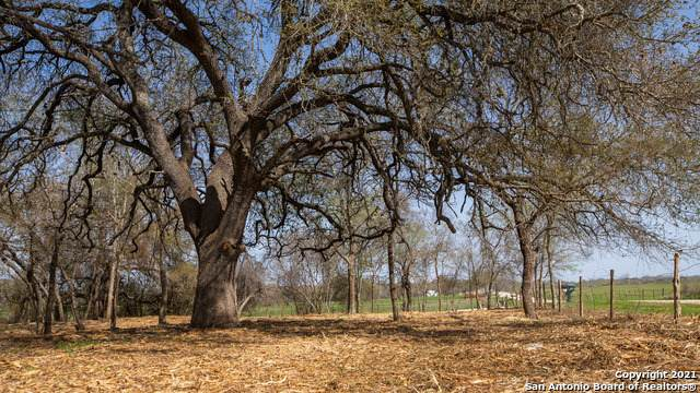 004 Eden Road, Seguin, TX 78155 (MLS #1516337) :: Carolina Garcia Real Estate Group