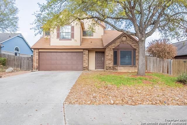 313 Hornbean Ln, Cibolo, TX 78108 (MLS #1516435) :: Vivid Realty