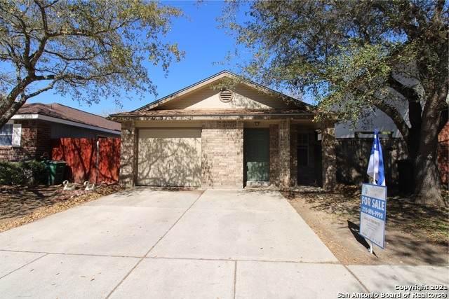 3211 Stoney Grove, San Antonio, TX 78247 (MLS #1516467) :: The Gradiz Group