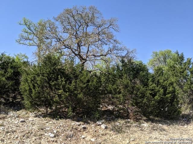 1327 Via Principale, New Braunfels, TX 78132 (MLS #1516587) :: Neal & Neal Team