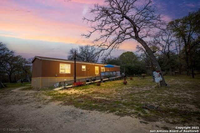 440 Blackjack Oak Rd, Seguin, TX 78155 (MLS #1516646) :: The Real Estate Jesus Team