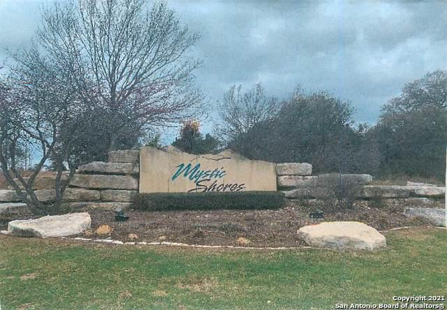 405 Oak Haven, Spring Branch, TX 78070 (MLS #1517021) :: The Real Estate Jesus Team