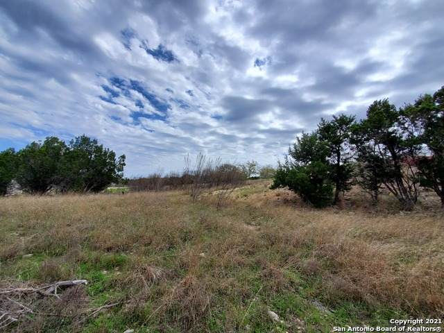 1981 Pinotage, New Braunfels, TX 78132 (MLS #1517176) :: Beth Ann Falcon Real Estate