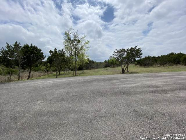 1582 Log Cabin Ln, Fischer, TX 78623 (MLS #1517289) :: Santos and Sandberg