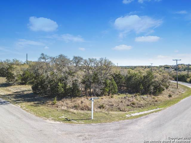 0 Corner Of N John Bird & E Alex Jordan, Blanco, TX 78606 (MLS #1517390) :: The Castillo Group