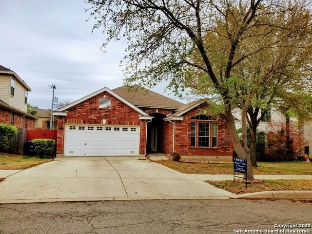 17107 Darlington Run, San Antonio, TX 78247 (MLS #1517466) :: Vivid Realty