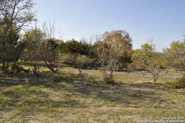 315 Lantana Mesa, Spring Branch, TX 78070 (MLS #1517565) :: Carolina Garcia Real Estate Group