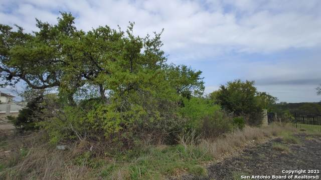 8811 Terra Mont Way, San Antonio, TX 78255 (MLS #1517877) :: Williams Realty & Ranches, LLC
