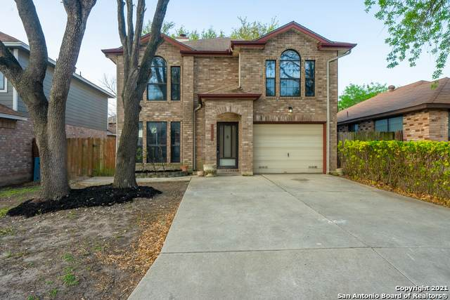 11342 Bald Mtn, San Antonio, TX 78245 (MLS #1517883) :: The Gradiz Group