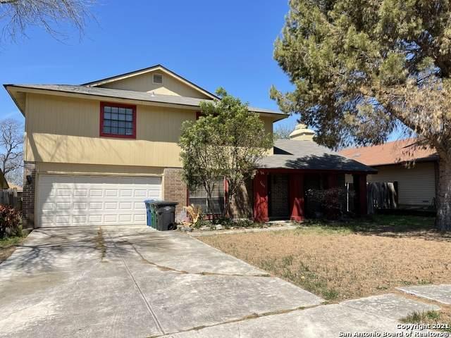 5667 Wood Climb St, San Antonio, TX 78233 (MLS #1517903) :: Carter Fine Homes - Keller Williams Heritage