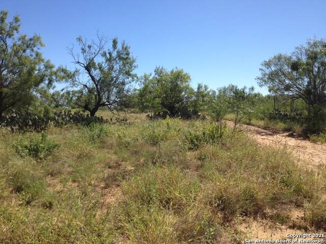 FM 186 AT COMMU S Fm 186, Carrizo Springs, TX 78834 (MLS #1518024) :: The Mullen Group | RE/MAX Access