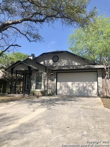 12019 Stoney Park, San Antonio, TX 78247 (MLS #1518082) :: The Gradiz Group