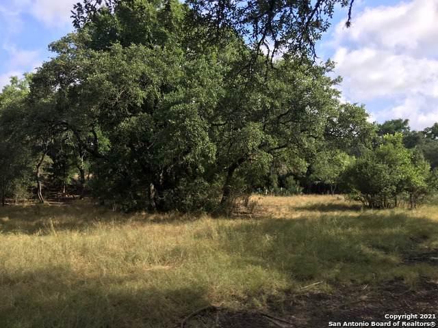 13323 IXL Dr, San Antonio, TX 78253 (MLS #1518181) :: The Lugo Group