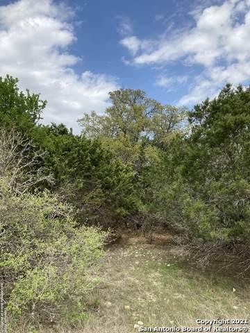 00 Regency, Spring Branch, TX 78070 (MLS #1518224) :: Beth Ann Falcon Real Estate