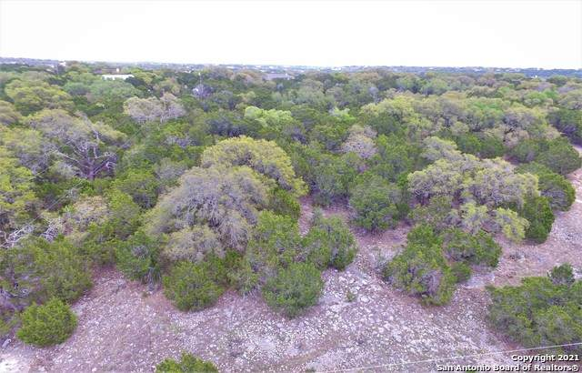 5028 Tanglewood Trail, Spring Branch, TX 78070 (MLS #1518283) :: Concierge Realty of SA