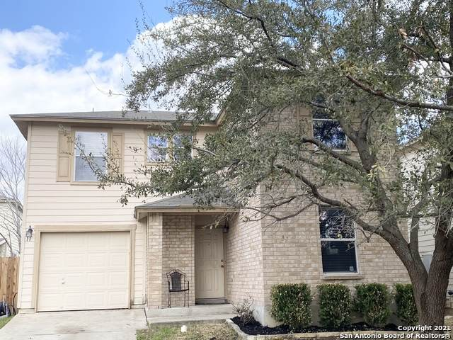 11 Adkins Rdg, San Antonio, TX 78239 (MLS #1518396) :: Vivid Realty