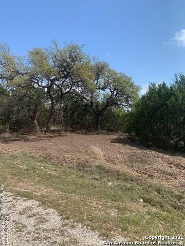 303 Charon Pt, Spring Branch, TX 78070 (MLS #1518430) :: The Real Estate Jesus Team