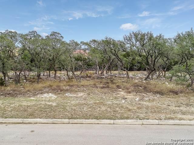 215 Ashling, San Antonio, TX 78260 (MLS #1518576) :: The Lopez Group