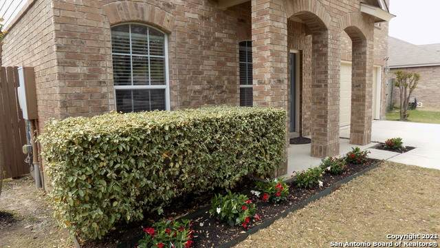 205 Latigo Ln, Boerne, TX 78006 (MLS #1518613) :: The Lopez Group
