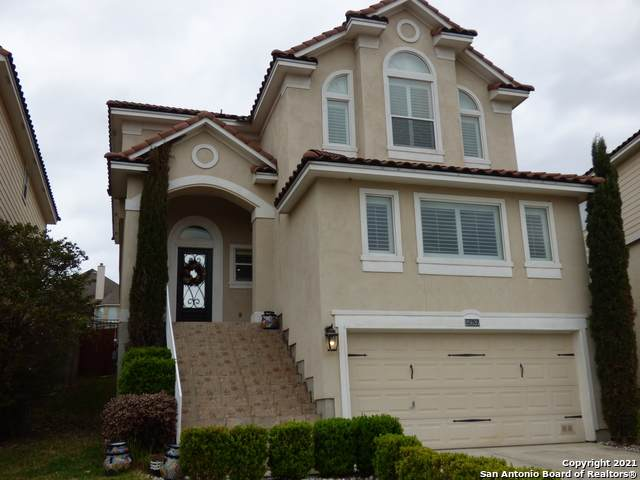 25535 S Tranquil Rim, San Antonio, TX 78260 (MLS #1518682) :: REsource Realty