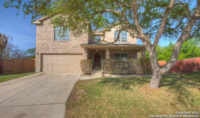 5443 Stormy Dawn, San Antonio, TX 78247 (MLS #1518741) :: Vivid Realty