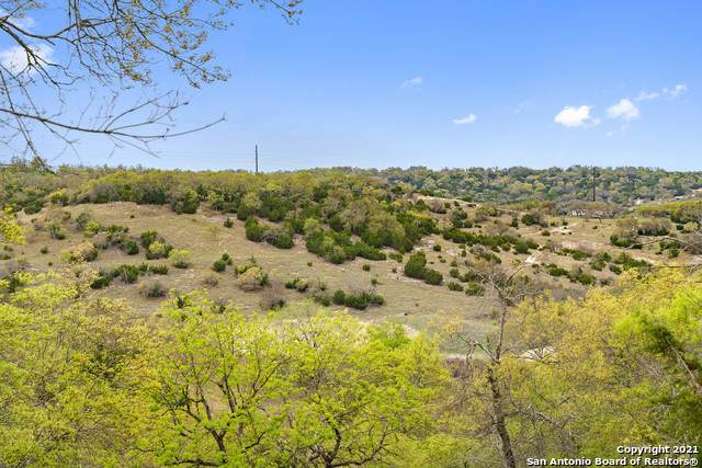 00 Moonbeam - Photo 1