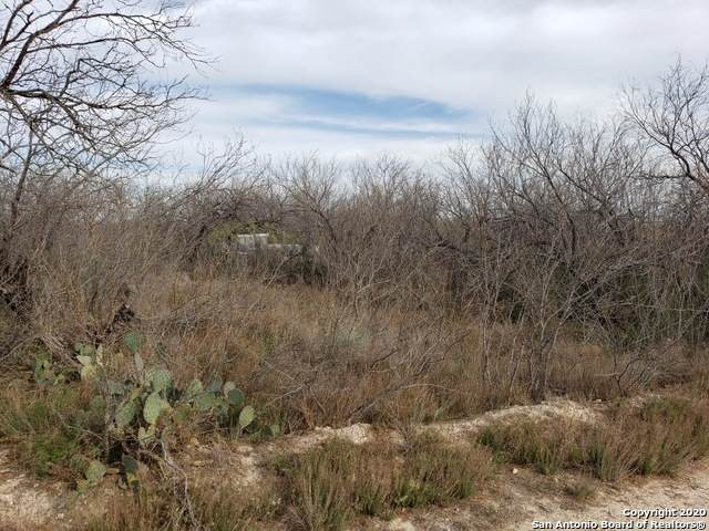 0000 Rancho Grande St, El Indio, TX 78860 (MLS #1518874) :: REsource Realty