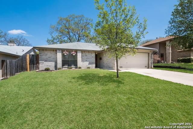 7734 Nimrod, San Antonio, TX 78240 (MLS #1518908) :: Vivid Realty
