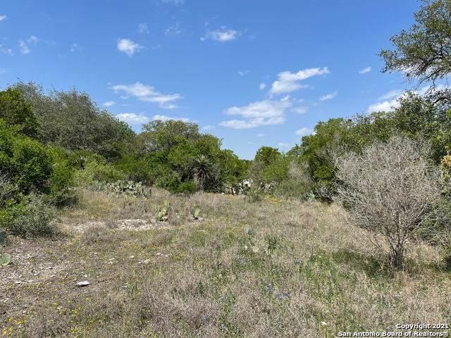 13407 Lattigo Trail - Photo 1