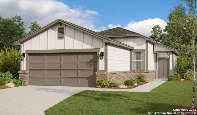 3919 Ivy Path, St Hedwig, TX 78152 (MLS #1519008) :: The Real Estate Jesus Team
