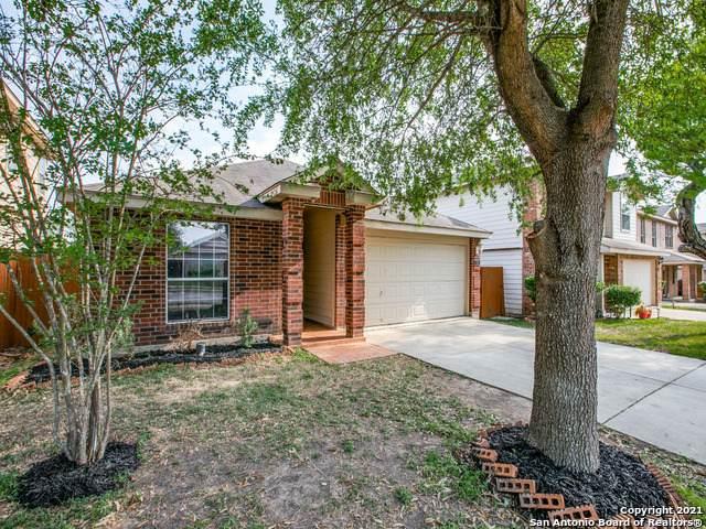 7434 Draco Leap, San Antonio, TX 78252 (MLS #1519026) :: Vivid Realty