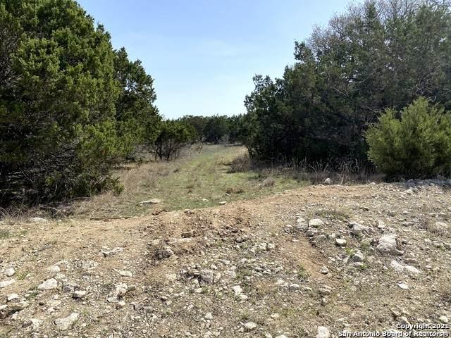 2057 Campfire, Spring Branch, TX 78070 (MLS #1519068) :: Vivid Realty