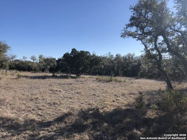 107 Billings Forest, Boerne, TX 78006 (MLS #1519082) :: Williams Realty & Ranches, LLC