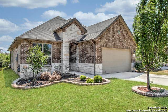 13846 Prosper Oaks, San Antonio, TX 78254 (MLS #1519099) :: Santos and Sandberg