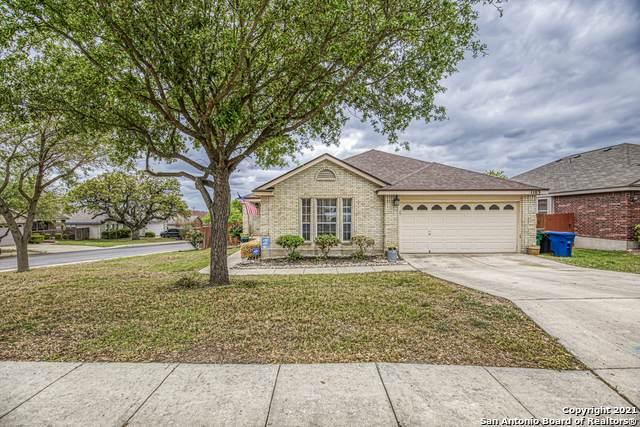 1103 Rattler Gap, San Antonio, TX 78251 (MLS #1519142) :: The Real Estate Jesus Team