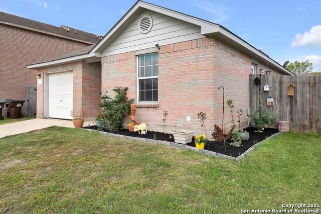 4041 Salty Marsh, San Antonio, TX 78245 (MLS #1519213) :: The Gradiz Group