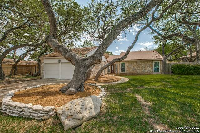 17106 Turkey Point St, San Antonio, TX 78232 (MLS #1519261) :: The Real Estate Jesus Team