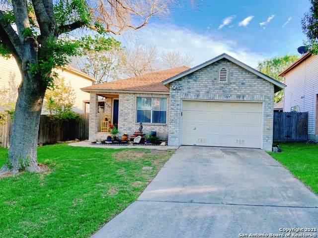 6630 Evenridge Ln, San Antonio, TX 78239 (MLS #1519293) :: Vivid Realty
