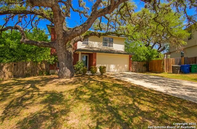 10303 Tiger Paw, San Antonio, TX 78251 (MLS #1519324) :: The Real Estate Jesus Team