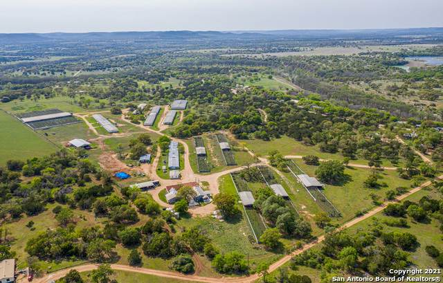 1598 Highland Dr, Bandera, TX 78003 (MLS #1519398) :: The Real Estate Jesus Team