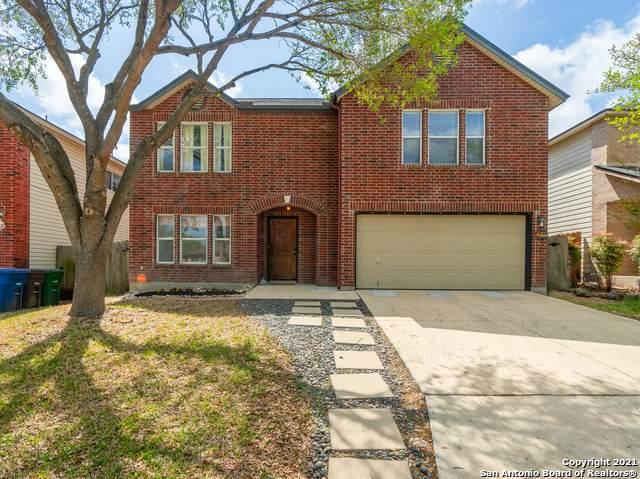 6310 Donely Pl, San Antonio, TX 78247 (MLS #1519423) :: Vivid Realty