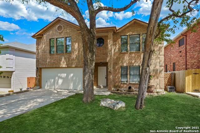 10314 Wilderness Gap, San Antonio, TX 78254 (MLS #1519491) :: Vivid Realty