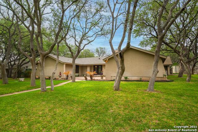 116 Northoak Dr, Hollywood Pa, TX 78232 (MLS #1519584) :: Exquisite Properties, LLC