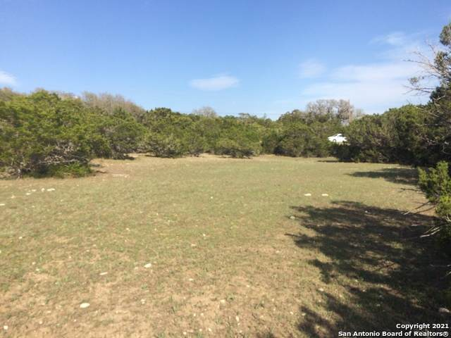 139 Lipizzan Ln, Spring Branch, TX 78070 (MLS #1519658) :: The Glover Homes & Land Group